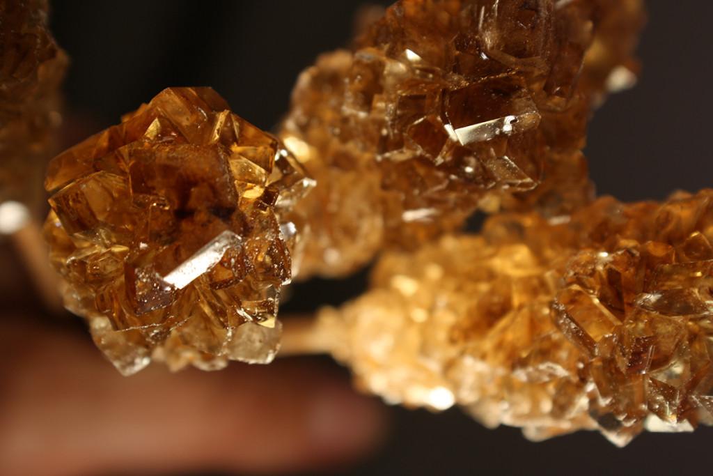 LUKAS ADOLPHI Der Geschmack von Gold